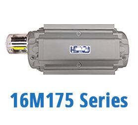 16M175 Series Gas Meters