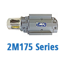 2M175 Series Gas Meters