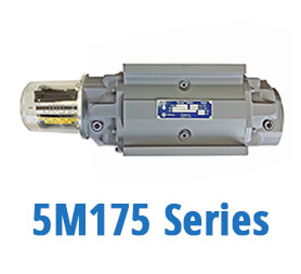 5M175 Series Gas Meters