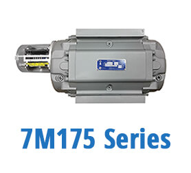 7M175 Series Gas Meters